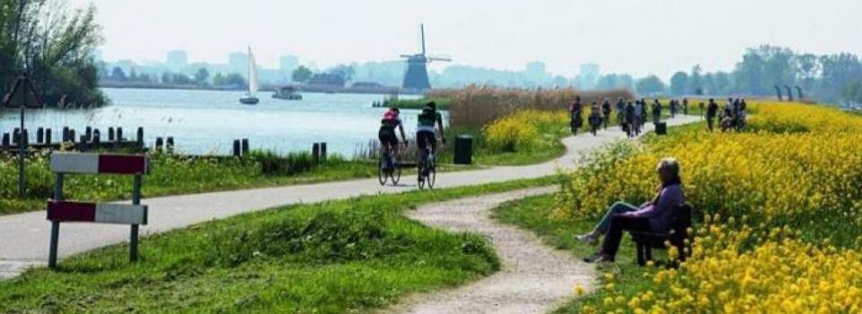 Online Bibliotheekcollege 'De longen van Rotterdam'