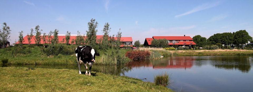 Camping Het Lansingerland